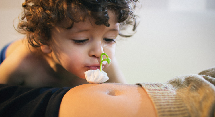niño besando un brote de alubita