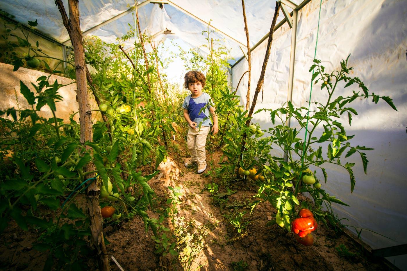 como fotografiar mi hijo en un invernadero