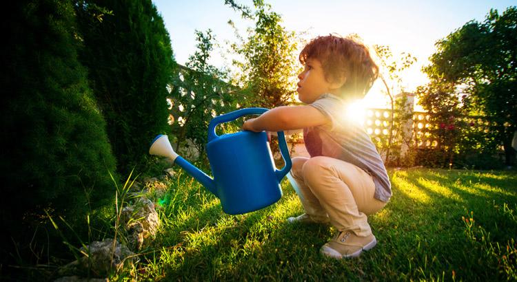 niño regando plantas y arboles