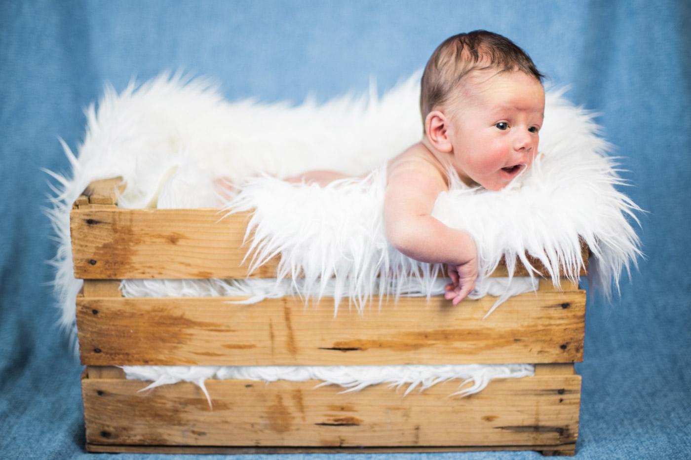 bebé en una caja de madera con mantas de pelo largo